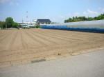 農業用売地(柏市船戸山高野) 隣の区画も売却可能! 日当り抜群の畑です!